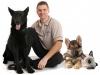 Sam the dog trainer for Sherlock Bones